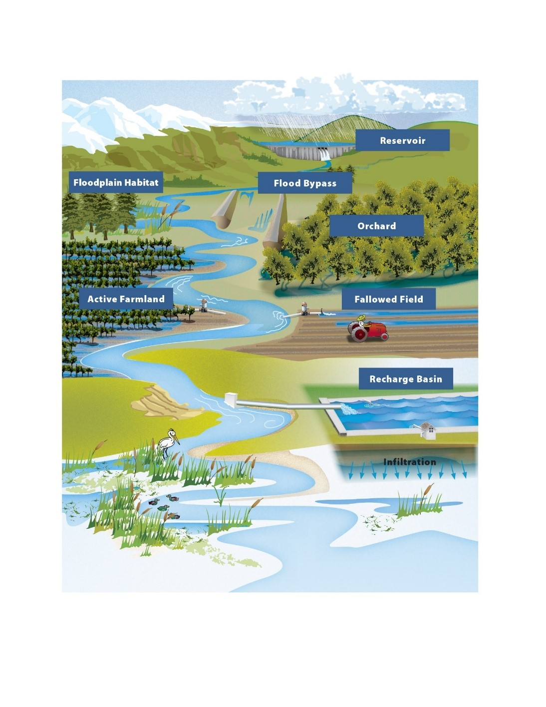 Flood - MAR illustrated concept of aquifer recharge.