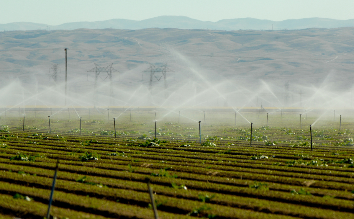 An irrigation system waters an agricultural field in California.