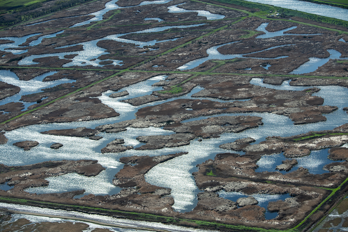 Aerial view of wetlands on Sherman Island in part of the Sacramento-San Joaquin River Delta in Sacramento County, California.