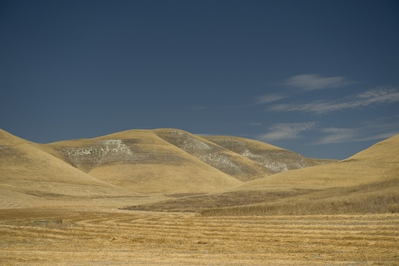 Dry hillsides near Kettleman City