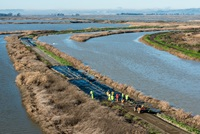DWR staff prepare overtop protection on the levees at Grizzly Island.