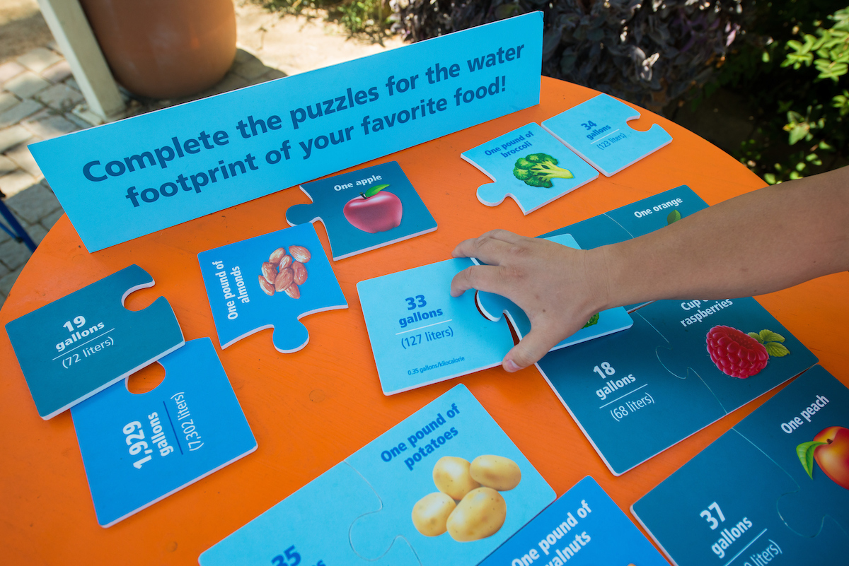 At the California State Fair, DWR offered table top games to educate kids of all ages about water and food production.