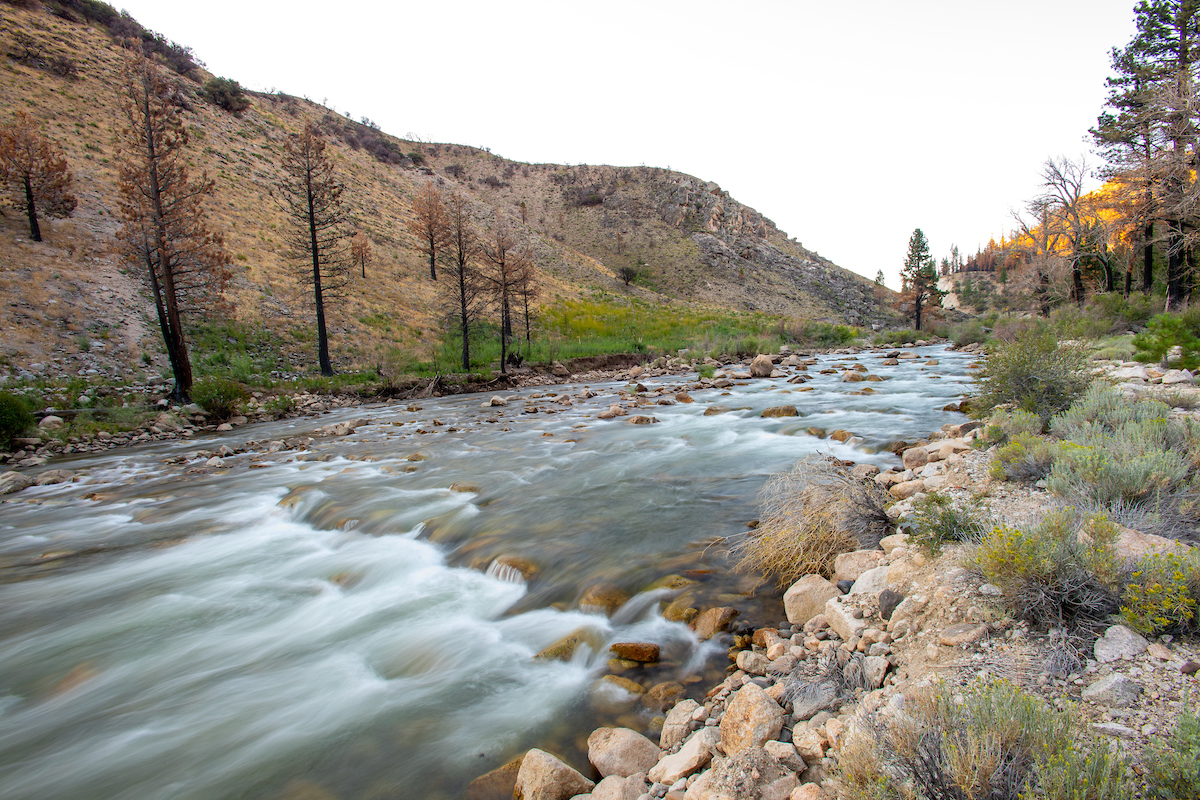 A long time exposure of the Walker River, located in the Humboldt-Toiyabe National Forest, near Coleville, California.