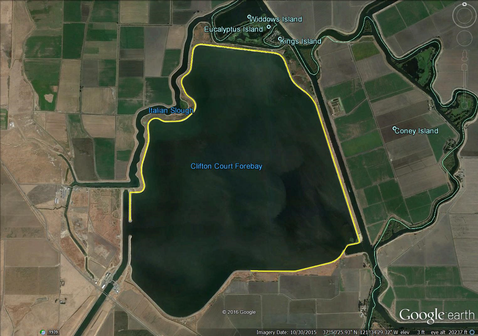 Clifton Court Forebay study site in Discovery Bay California